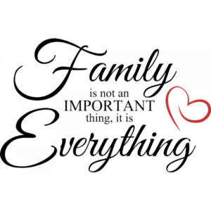 family-is-not-an-important-thing